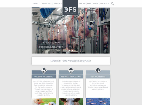 DFS Process Solutions Landing Pages for SEO